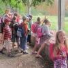 16-polkolonia 71 turnus III lato 2014 2014-07-29 09-47-29 3362x2051
